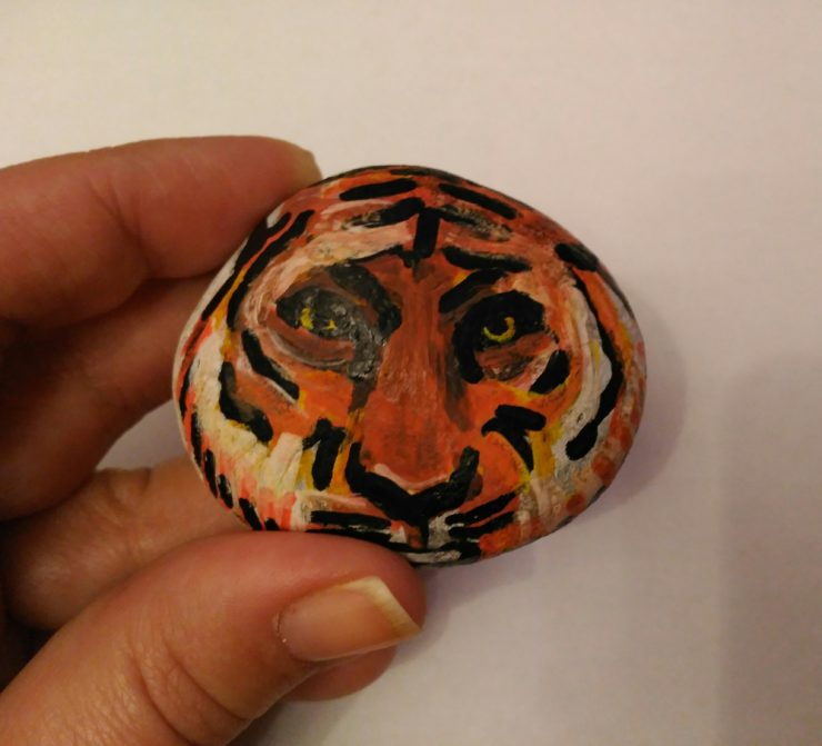 IMG 20180125 202927 740x671 - Step by step: Tiger on Stone
